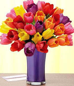 Flower  on Proflowers Flower1